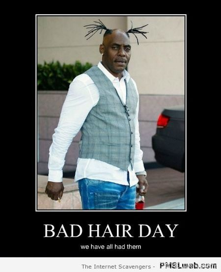 Bad hair day humor at PMSLweb.com