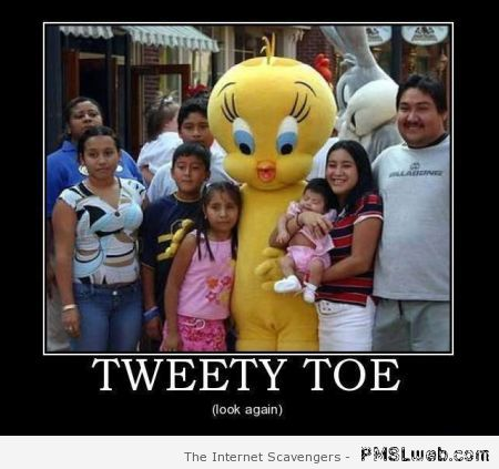 Tweety toe demotivational at PMSLweb.com