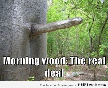Morning wood the real deal at PMSLweb.com
