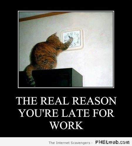 Real reason you're late for work at PMSLweb.com