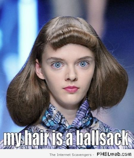 My hair is a ballsack meme at PMSLweb.com