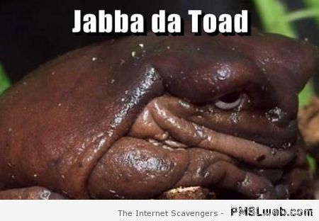 Jabba da toad – Funny Saturday at PMSLweb.com