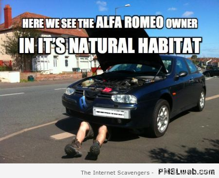Alfa Romeo owner meme at PMSLweb.com
