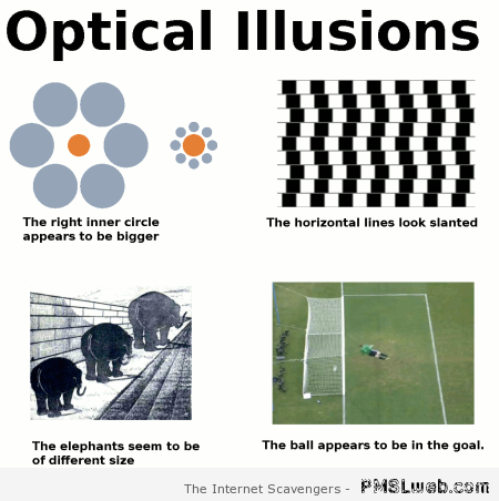 Optical illusions humor – Thursday picture collection at PMSLweb.com