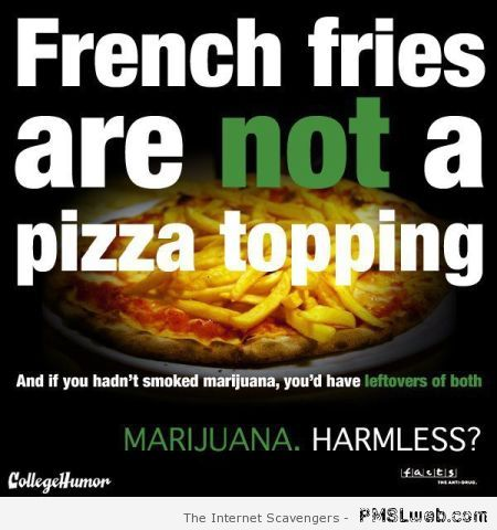 Marijuana and French fries humor – Thursday craze at PMSLweb.com