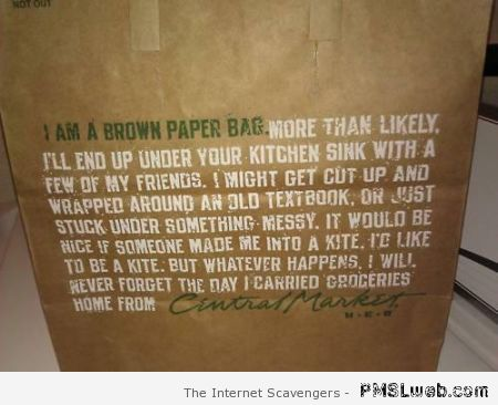 I am a brown paper bag at PMSLweb.com
