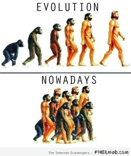 Evolution versus nowadays humor at PMSLweb.com