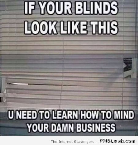 If your blinds look like this meme – TGIF madness at PMSLweb.com