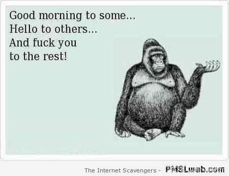 Good morning to some funny quote – Weekend laughter at PMSLweb.com