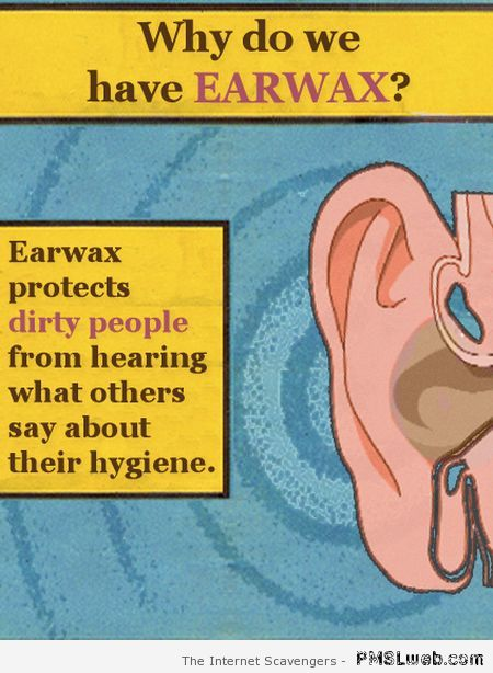 Why do we have earwax humor  - Friday hilarity at PMSLweb.com