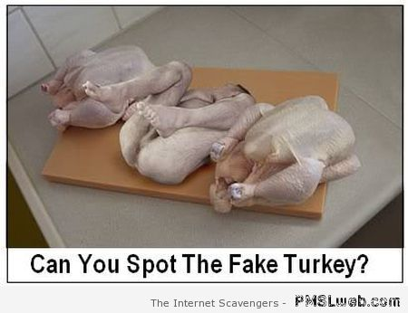 Can you spot the fake turkey at PMSLweb.com