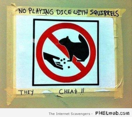 No playing dice with squirrels at PMSLweb.com