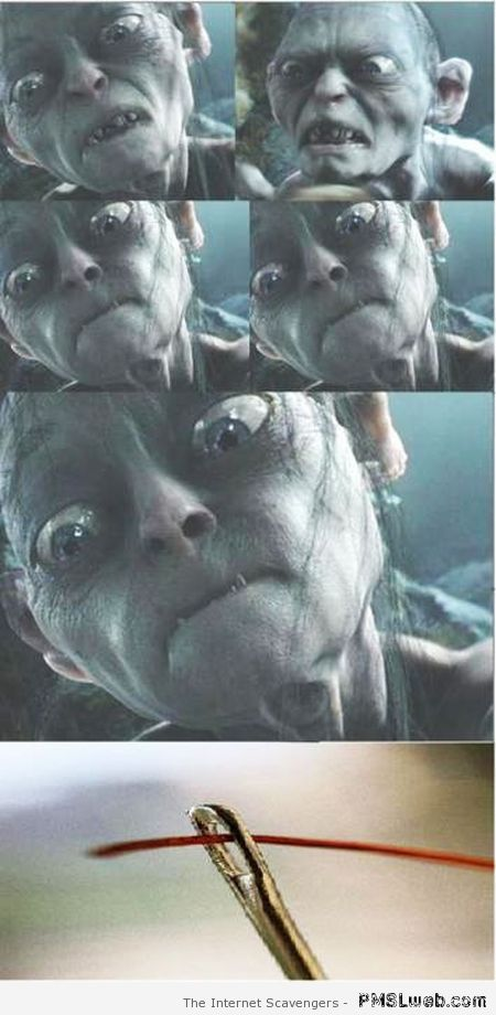 Funny Gollum and the needle meme at PMSLweb.com