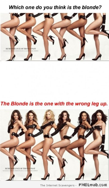 Which one is the blonde humor at PMSLweb.com