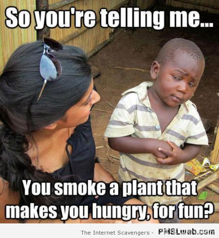 You smoke a plant that makes you hungry meme at PMSLweb.com
