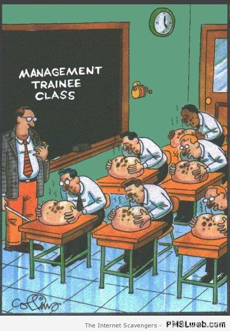 Sarcastic management trainee class at PMSLweb.com
