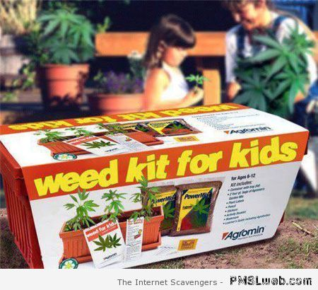 Weed kit for kids – Monday lol at PMSLweb.com