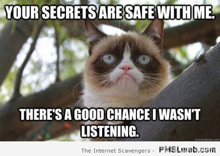 Your secrets are safe with me meme at PMSLweb.com