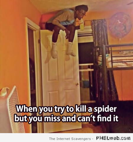 When you try to kill a spider but miss it meme at PMSLweb.com