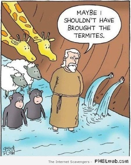 Termites in Noah's ark cartoon – Hump day nonsense at PMSLweb.com