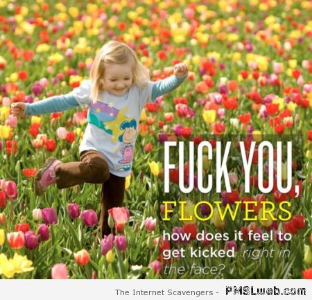 F*ck you flowers humor at PMSLweb.com