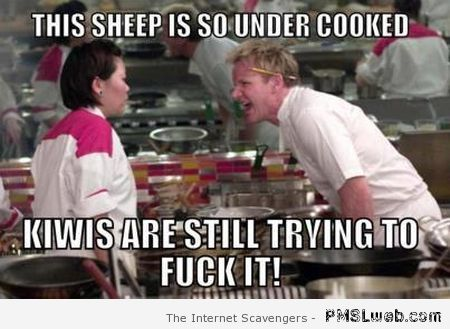 Gordon Ramsay sheep is under cooked meme at PMSLweb.com