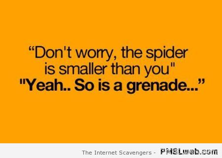 Funny spider quote at PMSLweb.com