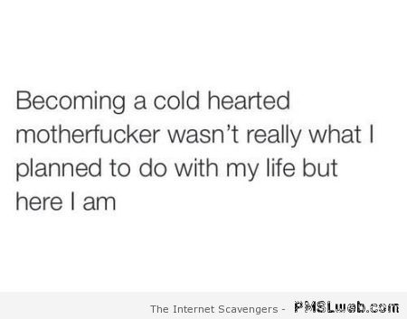 Becoming cold hearted funny quote at PMSLweb.com