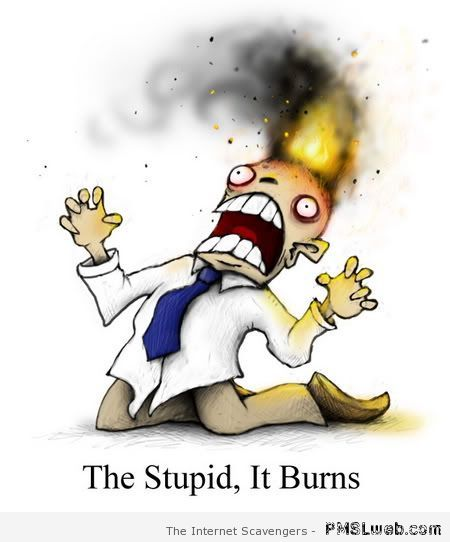 The stupidity it burns – Funny Hump day images at PMSLweb.com