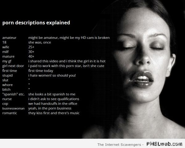 Funny porn descriptions explained at PMSLweb.com