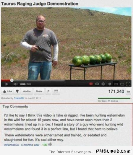 Funny watermelon hunt on youtube at PMSLweb.com