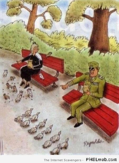 Military feeding pigeons humor at PMSLweb.com