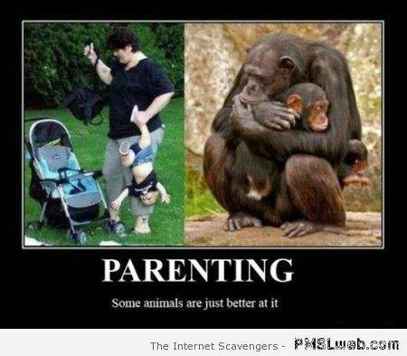 Parenting demotivational at PMSLweb.com