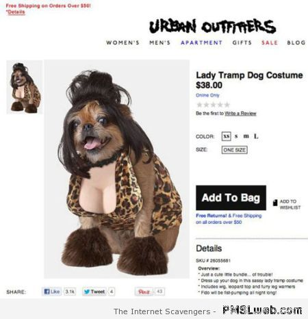 lady tramp dog costume at PMSLweb.com