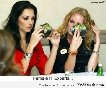Female IT experts at PMSLweb.com