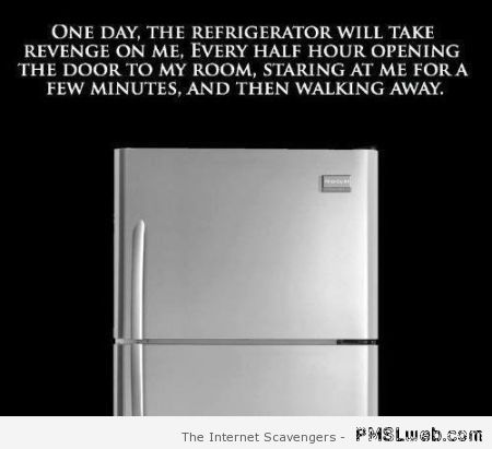 One day the refrigerator will take revenge at PMSLweb.com