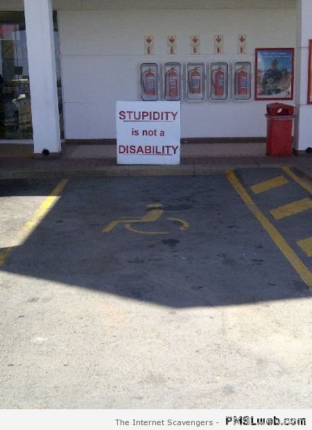 Stupidity is not a disability at PMSLweb.com