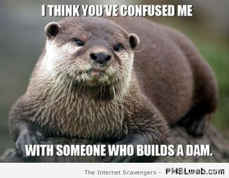 You've confused me with someone who builds a dam meme at PMSLweb.com