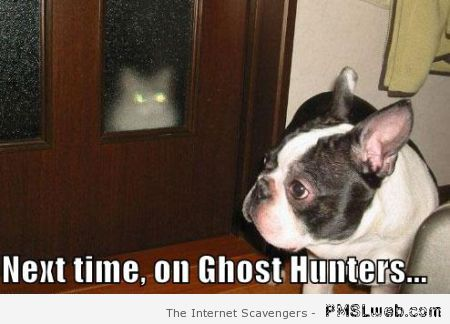 Next time on ghost hunters meme at PMSLweb.com