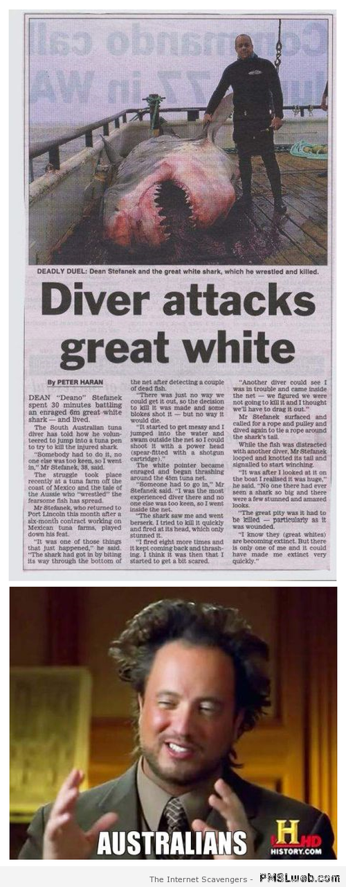 Aussie diver kills great white at PMSLweb.com