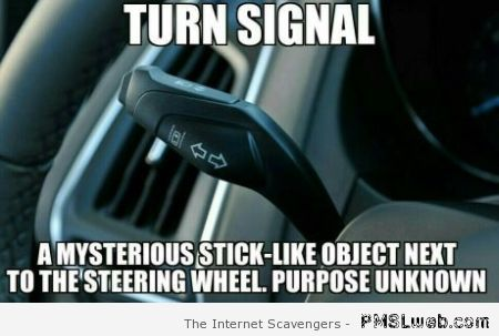 Turn signal meme at PMSLweb.com