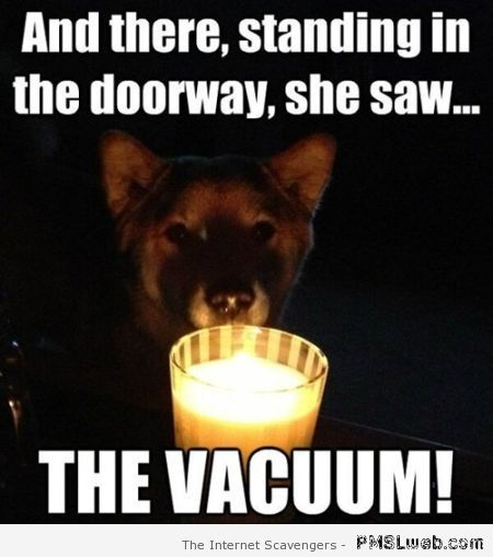 Funny dog scary story meme at PMSLweb.com