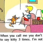 kitty-I-m-not-deaf-funny-cartoon