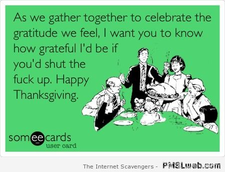 Sarcastic Thanksgiving ecard – Thanksgiving funnies at PMSLweb.com