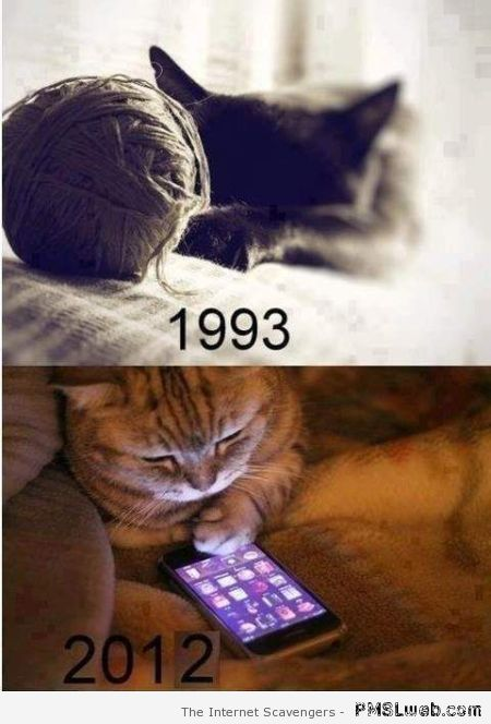 Funny cats then and now at PMSLweb.com