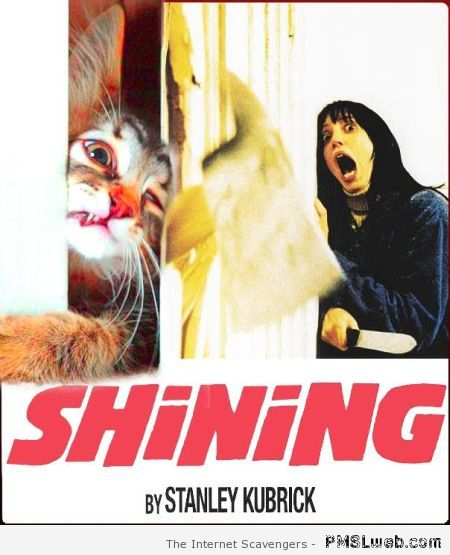 The Shining cat version – Stephen King humor at PMSLweb.com