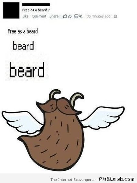 Free as a beard at PMSLweb.com