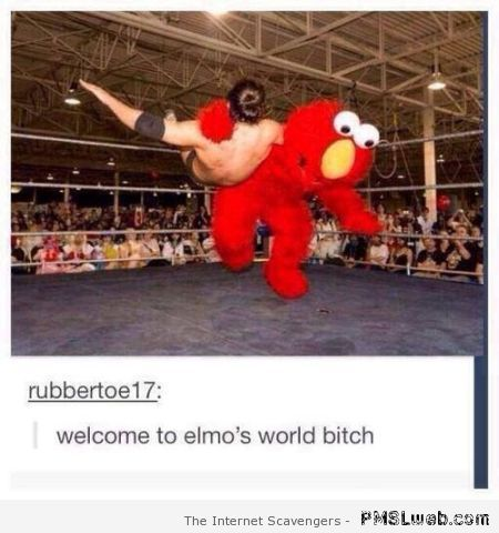 Welcome to Elmo's world humor at PMSLweb.com