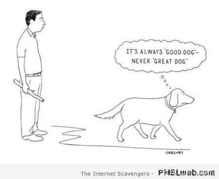 Good dog humor at PMSLweb.com