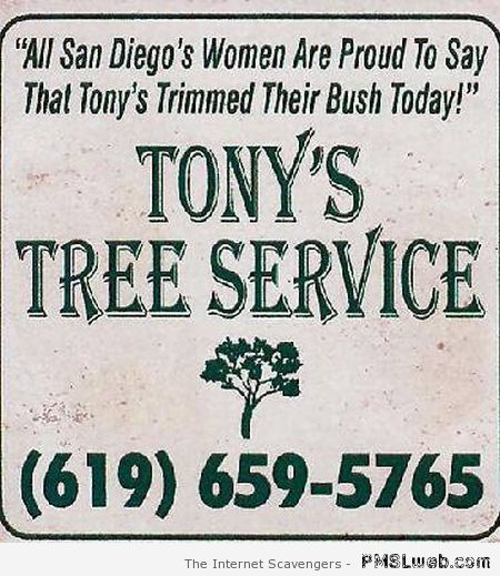 Funny tree services advert at PMSLweb.com